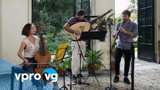 Theatro dei Cervelli - La soave melodia (live)