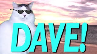 HAPPY BIRTHDAY DAVE! - EPIC CAT Happy Birthday Song