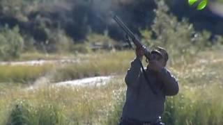 Охота на Ямале запрещена. Нарушители будут наказаны(В связи с чрезвычайной ситуацией в Ямальском районе, в округе запрещена охота. В том числе, на водоплавающую..., 2016-08-17T08:30:31.000Z)