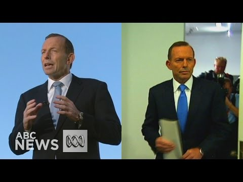 Tony Abbott: Former PM's dramatic political rise and fall