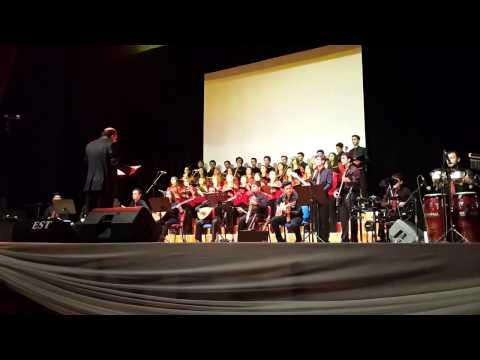 Ordu Güzel Sanatlar Lisesi 2014 Yıl Sonu Konseri
