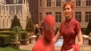 Sambalpuri spiderman
