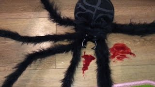 ANGRY BABY SAVES SISTER FROM KILLER SPIDER (LOL)
