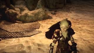 Dragon Age Inquisition Dalish warrior armor female elf