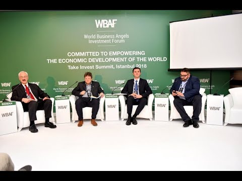 WBAF 2018 Panel: Crowdfunding rules for global entrepreneurs