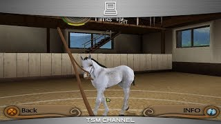 My Riding Stables : Life With Horses (part 6) (Horse Game)