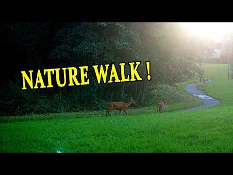 Gothenburg, Sweden - Nature walk