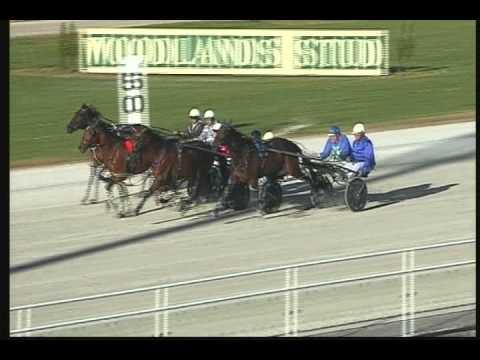 David Taylor: Horse Racing Alexander Park 1st place - YouTube