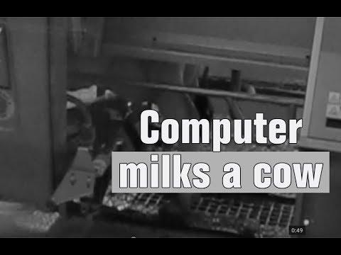 Computer  milks a cow on Iowa Farm - [2013-11-28]