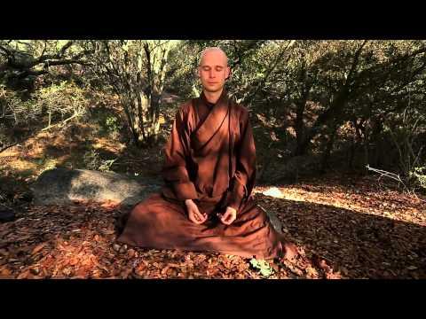 La meditación de los guijarros. Plum Village
