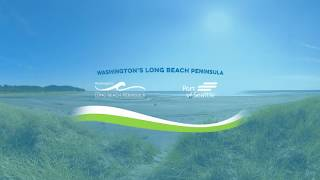 Washington's Long Beach Peninsula