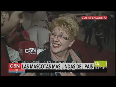 C5N - TardeXtra: expo Cachogos en Costa Salguero
