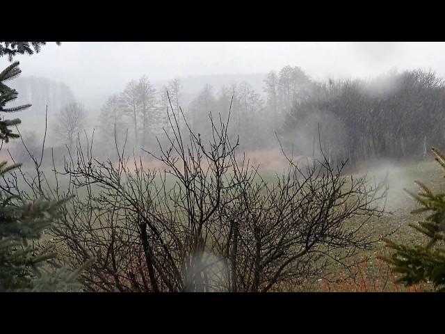 Tavaszi Havazás Slow Motion Videó