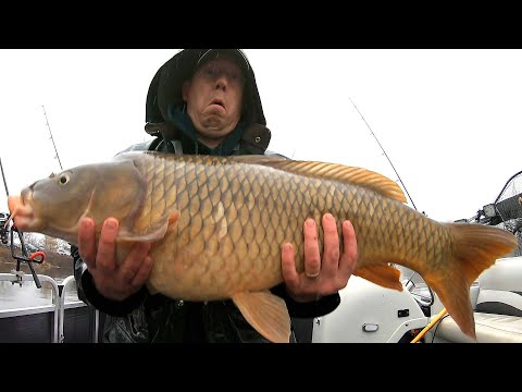 200 Lb Carp Fishing Challenge! Catching 200 Lbs Of Carp In The Winter
