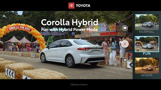 Toyota - In Market