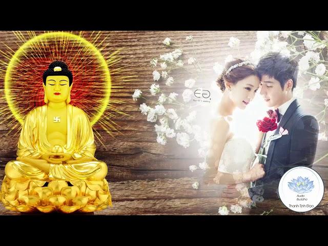 Người Thất Tình Nên Nghe Video Này - Phần 2 - Phật Dạy Về Tình Yêu - Rất Hay