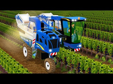 HARVESTING GRAPES in Farming Simulator 17