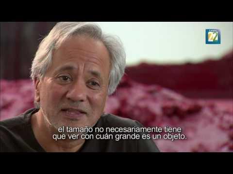 """Anish Kapoor. """"Arqueología: Biología"""""""