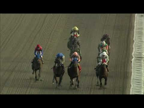 video thumbnail for MONMOUTH PARK 10-10-20 RACE 11