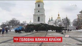 До Києва прибула головна ялинка України