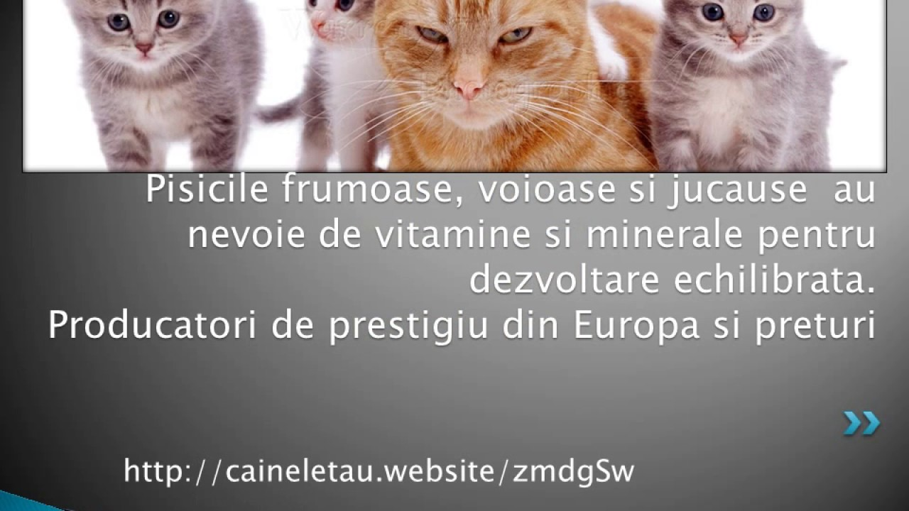 condroitină polidex glucozamină)