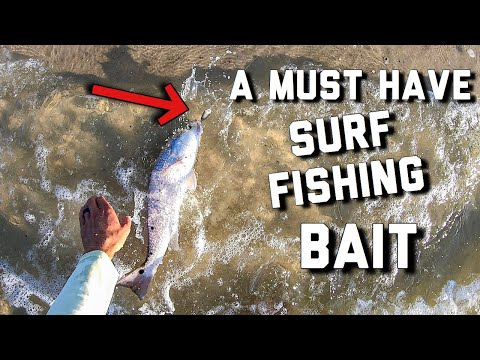 A MUST HAVE For Surf Fishing | Fishing In Gulf Shores Alabama