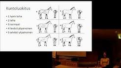 ELL Mirjami Miettisen luento: Hevosen ensiapu ja terveydenhuolto