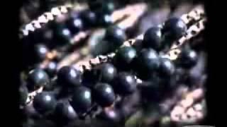 Acai Berry - Weight loss pills