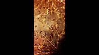 La Vie En Rose : A Cappella by Nicolette Mallow