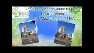 Курсы бухгалтеров и 1С бухгалтерии в Гродно - Древо знаний