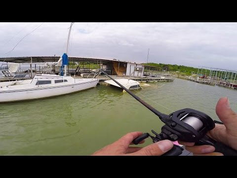 Catching fish out of a SUNKEN SHIP!!