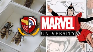 The Wasp: The Science of Wasps | Marvel University