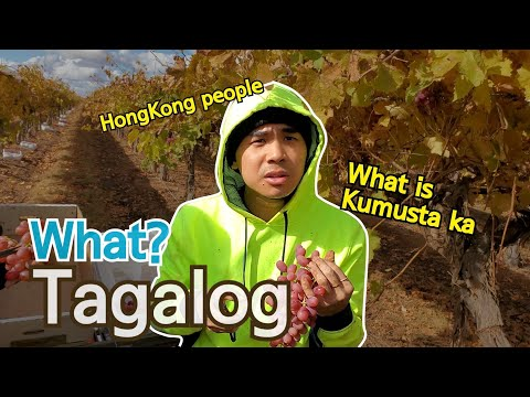 Lovely language. After HongKong people hears Tagalog for the first time.