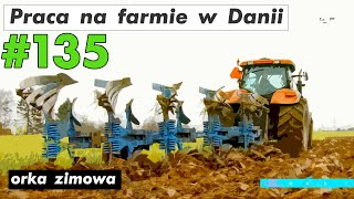 Praca na farmie w Danii #135 | Work on the farm in Denmark #135 orka zimowa winter plowing