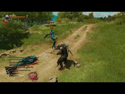 Ghost Mode for TW3: testing new counters