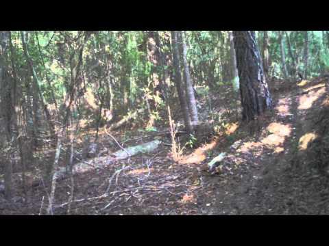 """South Carolina MTB:  Horry Bike Run Park """"The Hulk"""""""