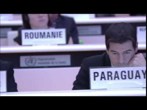 "Paraguay votes ""No"", takes stand against singling out Israel at UN's 2016 World Health Assembly"