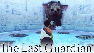 The Last Guardian - Huge Battle! (23)