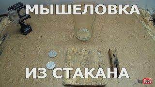 ✅Простая мышеловка из стакана