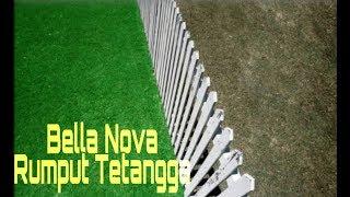 Bella Nova - Rumput Tetangga (Official Lirics)