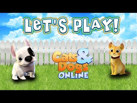 Let's Play Cats & Dogs Online! [FOXIE GAMES]