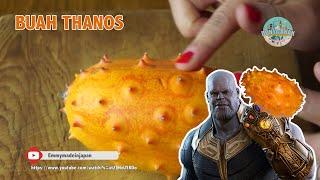 Buah Alien Yang di makan Thanos Ternyata ada Bumi - Buah Kiwano