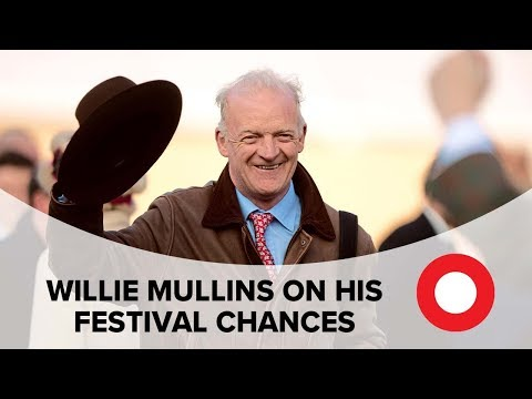 Willie Mullins on his Cheltenham Festival chances