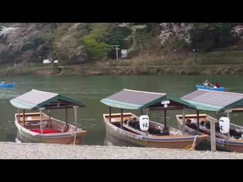 PUBVID2017.4.9Sun Arashiyama, Kyoto Boating time