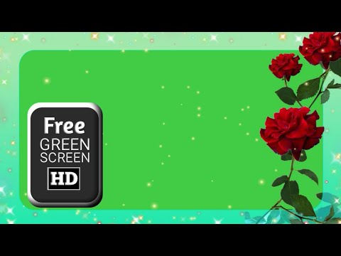 Green screen rose video effects, frame green screen animation, flower green screen video