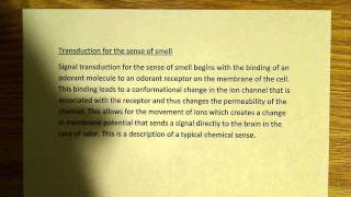 Transduction for the sense of smell