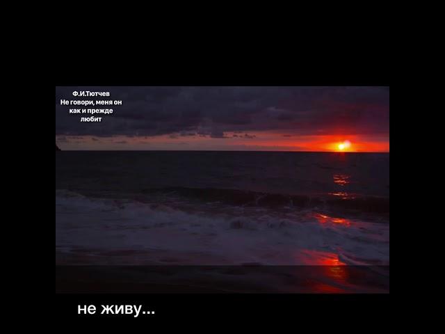 Изображение предпросмотра прочтения – ЯнаЗеленская читает произведение «Неговори: меня он, как ипрежде, любит…» Ф.И.Тютчева