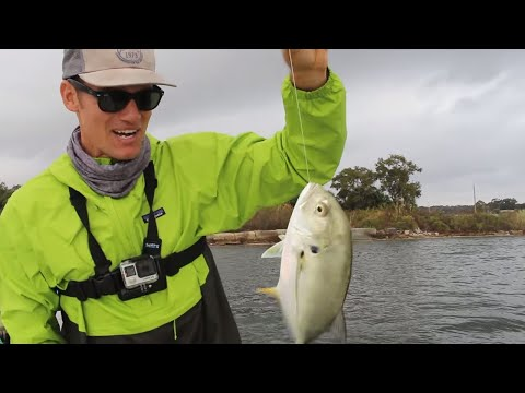 Catch And Cook Jack Crevalle | Taste Test