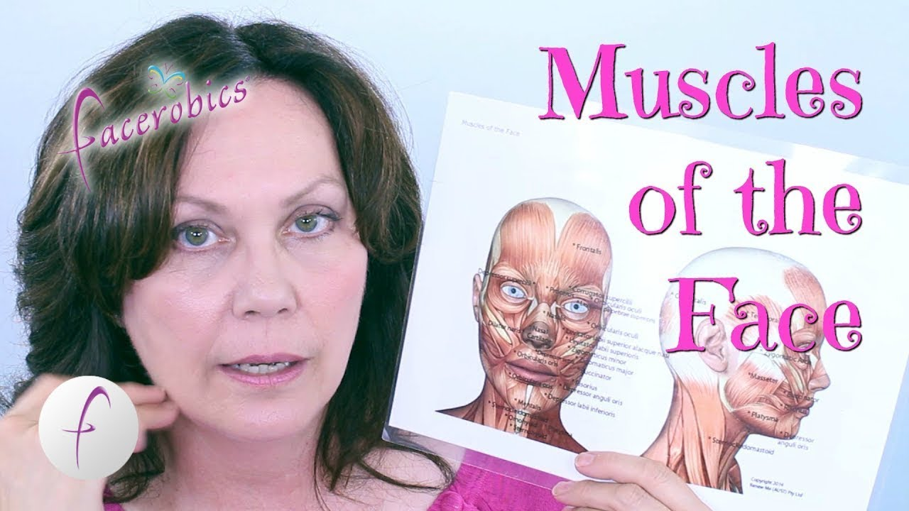 Learn The Muscles Of The Face Facerobics Youtube