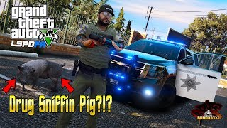 🐷Drug Sniffing Pig?!?!◆LSPDFR Sheriff Narcotics Unit◆Real Life Police Mods for GTA 5 #BUDDANATION